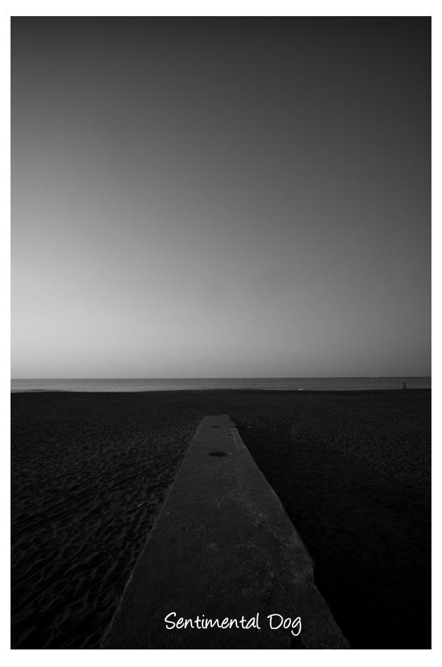 海までの道.jpg