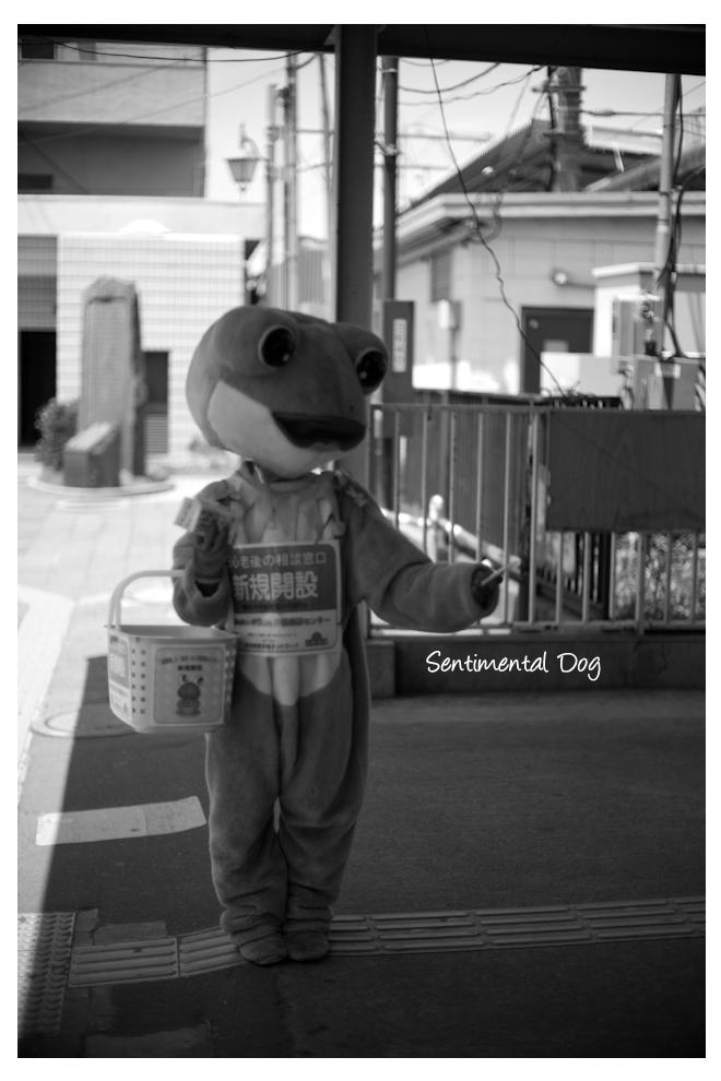 Tsujido4.jpg